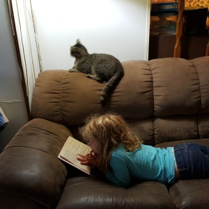Reading her book with the cat for company
