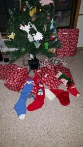 Santa did come!